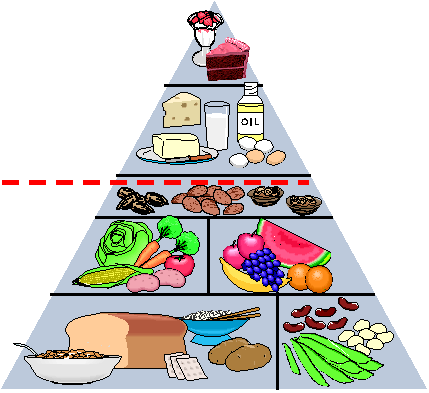 рисунок здоровое питание человека